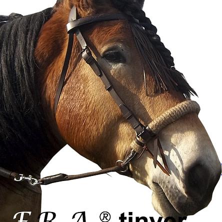 F.R.A.® Tinver