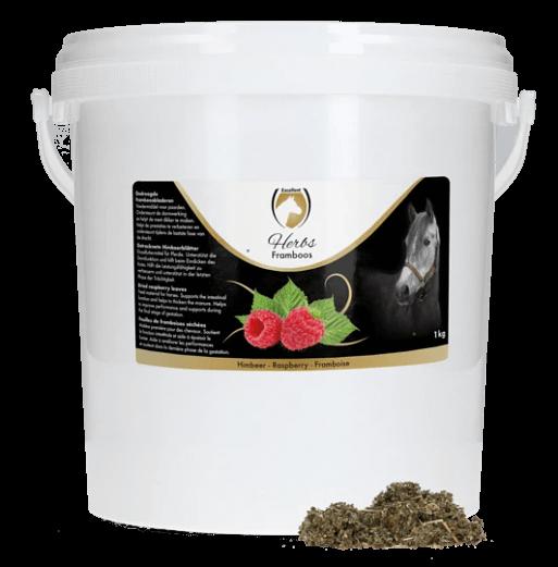 excellent-herbs-Himbeere