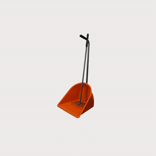 Mistboy orange