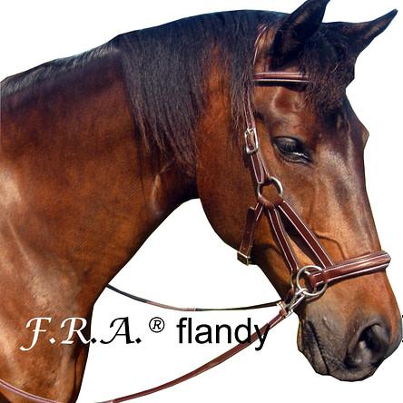 F.R.A.® Flandy
