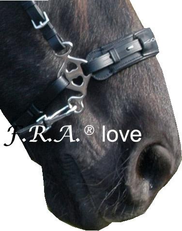 F.R.A. hackamore love